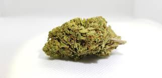 8 gram Charm City CBD Hemp Flower Glass Jar