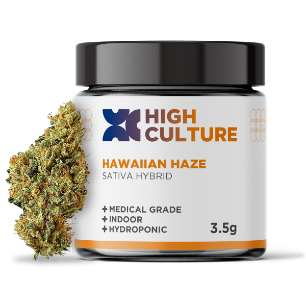 High Culture Hawaiian Haze Indoor Hydroponic Hemp Flower - 3.5 Gram Jar